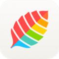薄荷健康下载最新版_薄荷健康app免费下载安装