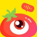 番茄派对下载最新版_番茄派对app免费下载安装