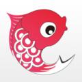 小鲤鱼育儿下载最新版_小鲤鱼育儿app免费下载安装