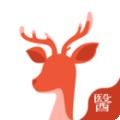 小鹿医生版下载最新版_小鹿医生版app免费下载安装