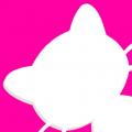 猫咪小视频下载最新版_猫咪小视频app免费下载安装