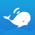 大蓝鲸下载最新版_大蓝鲸app免费下载安装