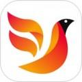 火鸟门户下载最新版_火鸟门户app免费下载安装