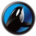 人民鲸鱼下载最新版_人民鲸鱼app免费下载安装