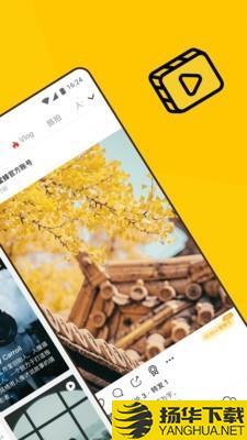 像素蜜蜂下载最新版_像素蜜蜂app免费下载安装