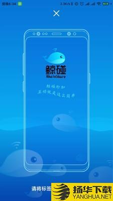 鲸碰下载最新版_鲸碰app免费下载安装