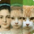 Zooface下载最新版_Zoofaceapp免费下载安装