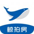 鲸拍房下载最新版_鲸拍房app免费下载安装