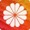 DIY动态壁纸大全下载最新版_DIY动态壁纸大全app免费下载安装
