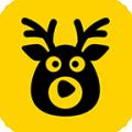 来鹿下载最新版_来鹿app免费下载安装