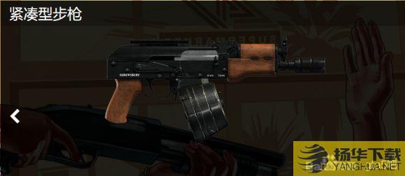 《GTAOL》紧凑型步枪分析