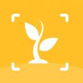 植物图鉴下载最新版_植物图鉴app免费下载安装