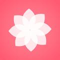 壁纸管家红包版下载最新版_壁纸管家红包版app免费下载安装