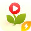苗苗视频极速版红包版下载最新版_苗苗视频极速版红包版app免费下载安装
