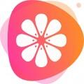 橙子短视频下载最新版_橙子短视频app免费下载安装