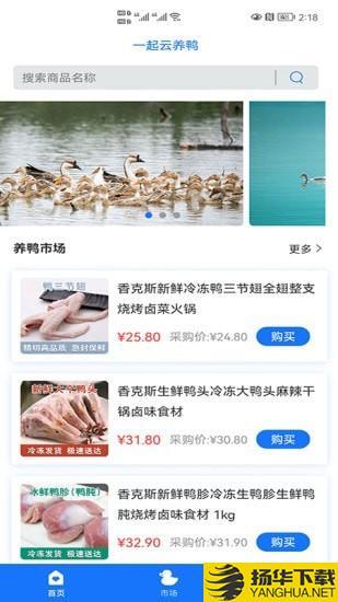 一起云养鸭下载最新版_一起云养鸭app免费下载安装